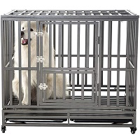 BEST LARGE STRONG METAL DOG CRATE Summary