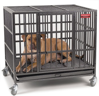 BEST MEDIUM HEAVY DUTY DOG CRATE FOR SEPARATION ANXIETY
