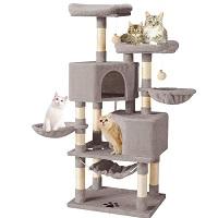 BEST MULTI-CAT CONDO WITH HAMMOCK summary