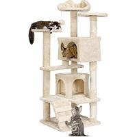 BEST MULTI-LEVEL CAT CONDO HOUSE summary