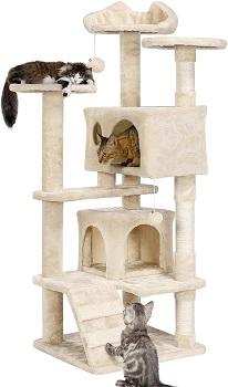 BEST MULTI-LEVEL CAT CONDO HOUSE