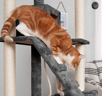 BEST OF BEST CAT ACTIVITY TREE