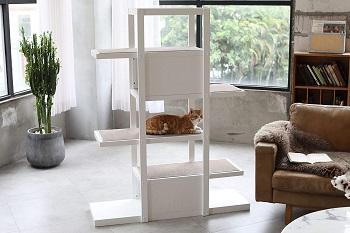 BEST OF BEST CAT BOOKCASE