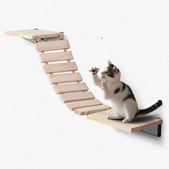 BEST OF BEST CAT CLIMBING SHELVES