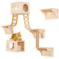 BEST OF BEST CAT JUNGLE GYM WALL summary
