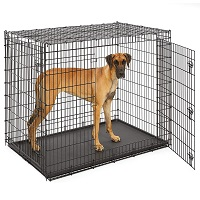 BEST OF BEST EXTRA TALL DOG CRATE Summary