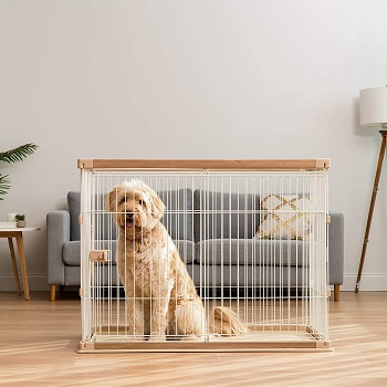 BEST PLASTIC EXTRA TALL DOG CRATE