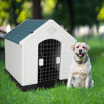 BEST PLASTIC HOUSE SHAPED DOG CRATE