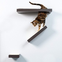BEST SET CAT CLIMBING SHELVES summary