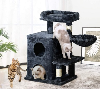 BEST SMALL ADULT CAT TOWER