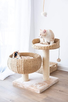 BEST SMALL BOHO CAT TREE