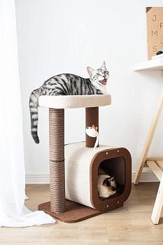 BEST SMALL CAT SCRATCHER CONDO TREE