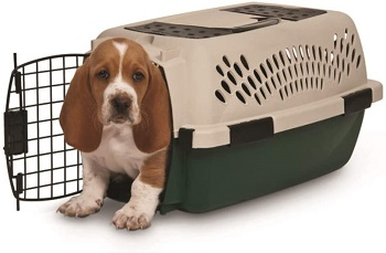 BEST SMALL HEAVY DUTY PLASTIC DOG CRATE