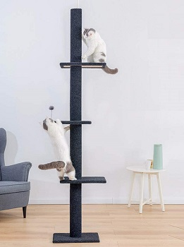 BEST TALL CAT CLIMBING STRUCTURE