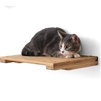 BEST WALL BOOKSHELF FOR CATS summary