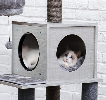 BEST WITHOUT CARPET ADULT CAT TREE