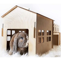 BEST WOODEN BUNNY HIDEY HOUSE summary