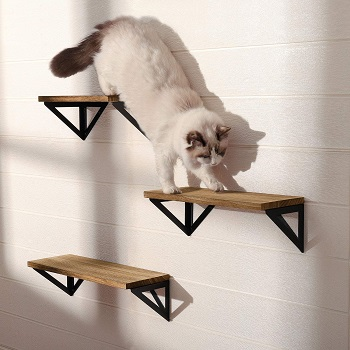 Bayka Bookcase Cat Tree For Lounging