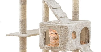 BestPet Scratcher Climbing Furniture