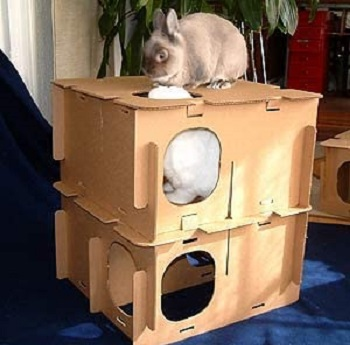 BlinkyBunny Rabbit House