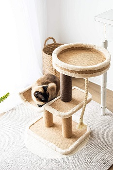 Catry Scratching Climbing Cat Tower