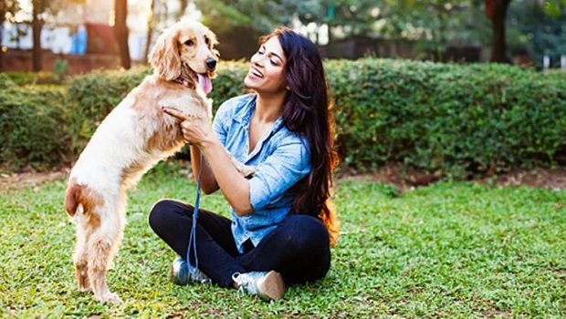 Contact With Dogs Reduces Stress