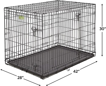 Crate Dog Crate Starter Kit