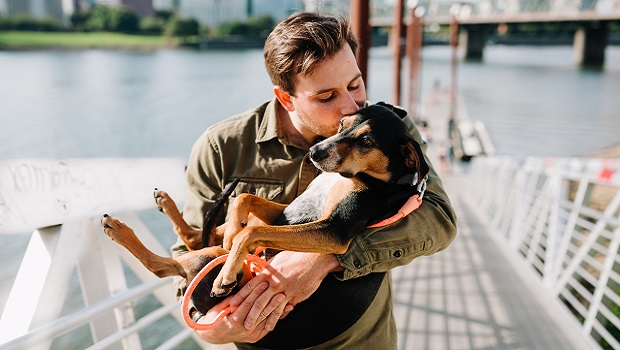 Dogs Help To Release Oxytocin - The ''Love Hormone''