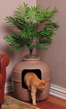 Good Pet Stuff Palm Tree Litter Box