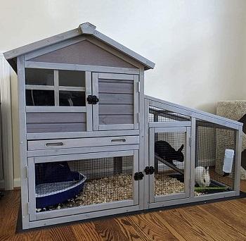 Gutinneen Rabbit House