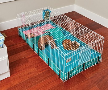 Midwest Rabbit Cage