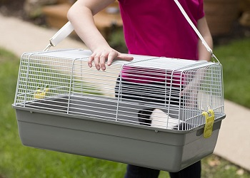Prevue Pet Bunny Travel Cage