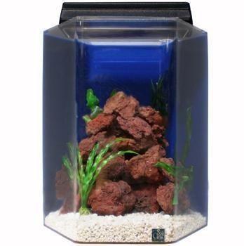 Advance Aqua Tank Blue Aquarium