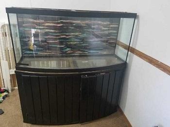 All Glass Aquarium Stand