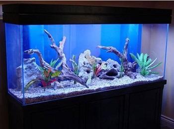 Aqua Dream Aquarium Stand