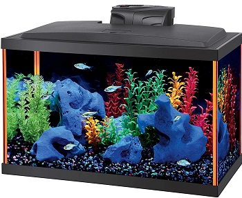 Aqueon Fish Aquarium Starter Kit