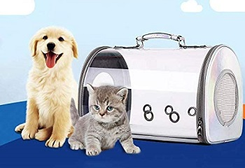 BEST ACRYLIC CLEAR DOG CRATE