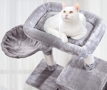 BEST FOR LARGE CATS 36 INCH CAT TREE