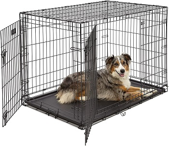 BEST INDOOR CAR CRATE FOR LARGE DOG