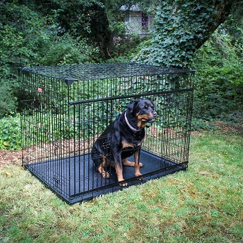 BEST INDOOR CRATE FOR GIANT BREED DOG