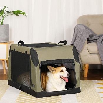 BEST MEDIUM COLLAPSIBLE TRAVEL DOG CRATE