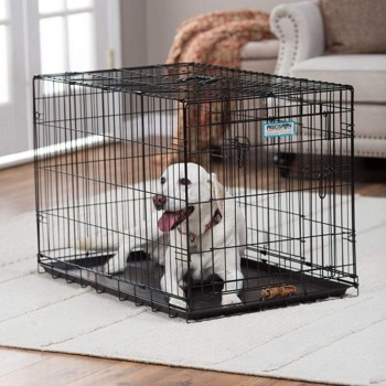 BEST METAL 36 INCH DOG CRATE WITH DIVIDER