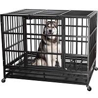 BEST METAL BLACK DOG CAGE Summary