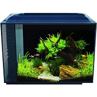 BEST OF BEST 15 GALLON LONG AQUARIUM summary