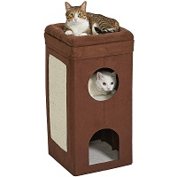 BEST OF BEST 2 STORY CAT CONDO summary