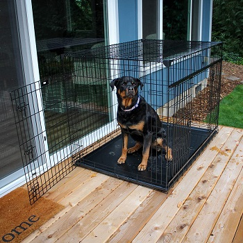 BEST OF BEST DOG APARTMENT CRATE