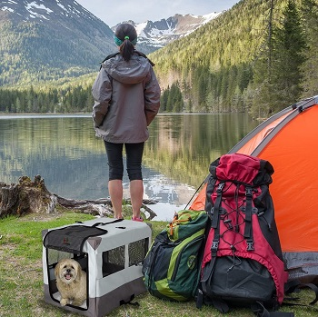 BEST OF BEST DOG CAMPING CRATE