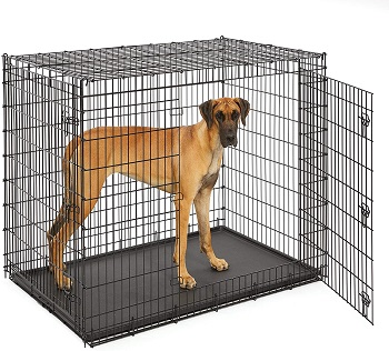BEST OF BEST GIANT DOG CAGE