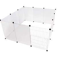 BEST PLASTIC CLEAR DOG CRATE Summary