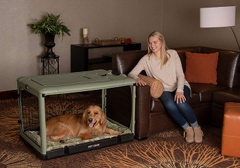 BEST PLASTIC COLLAPSIBLE DOG CRATE TRAVEL